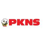 logo_pkns