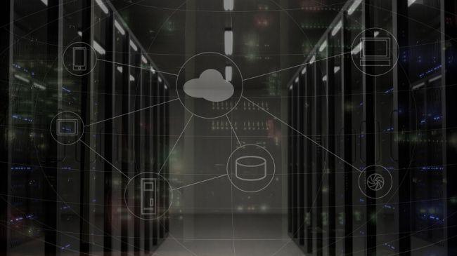 Shared hosting vs dedicated hosting: Which plan should I choose?