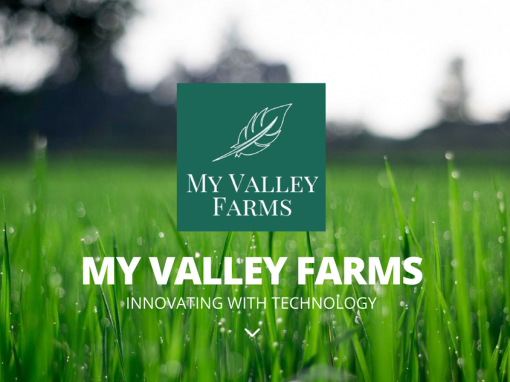 My Valley Farms